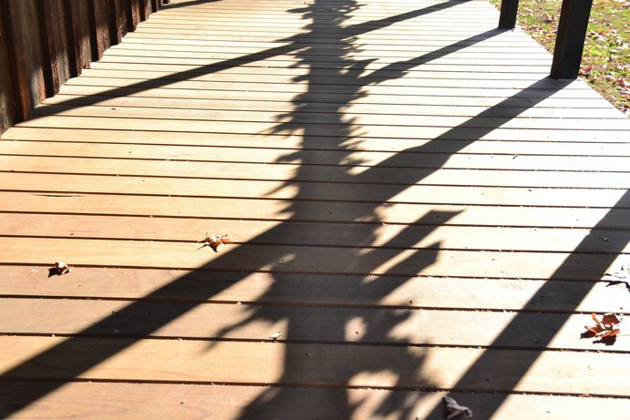 Walking on the hardwoodfloors at Kern County Museul