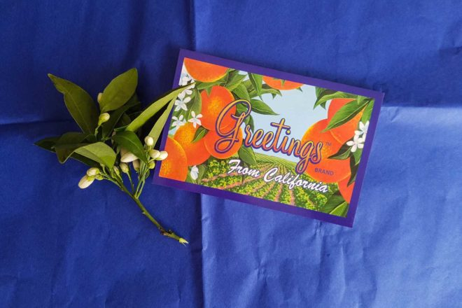 Greetings postcard from Califronia Fruit Depot in Bakersfield, California